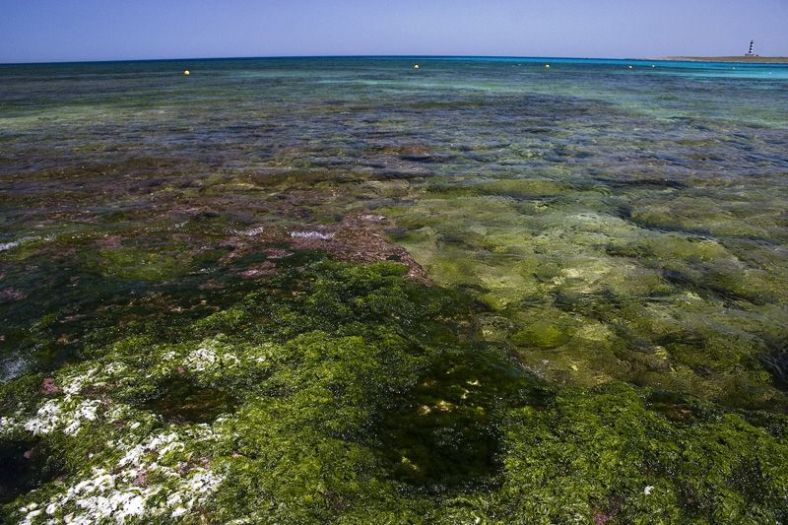 Punta Prima (Menorca). Mayo 2006
