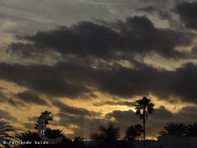 Gran Canaria. Diciembre 2013