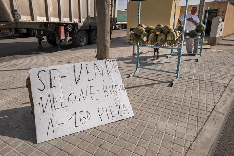 Villaconejos (Madrid). Julio 2014