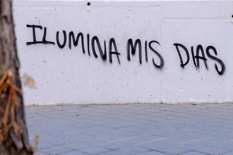 Rivas-Vaciamadrid (Madrid). Julio 2014